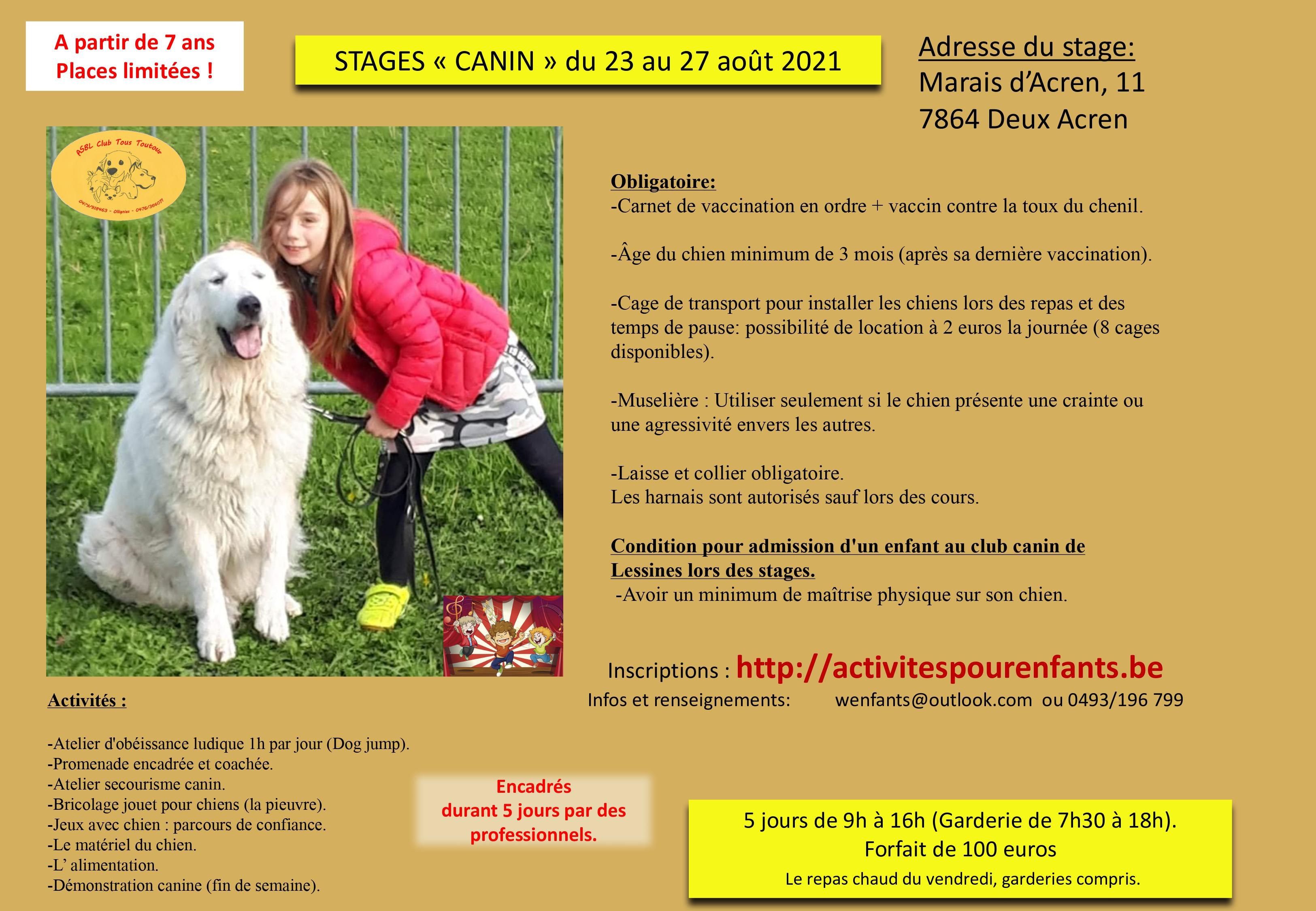 Stage canin à Lessines